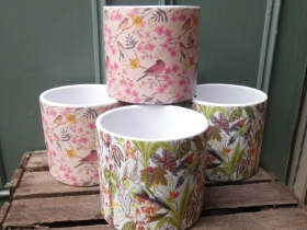 Pretty Bird Pots
